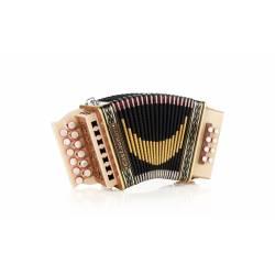 Castagnari Giordy accordion