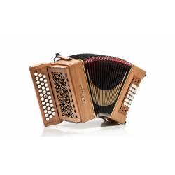 Castagnari Big 18 accordion