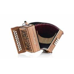 Castagnari Dinn II accordion