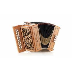 Castagnari Dinn III accordion