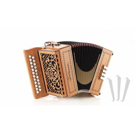 Castagnari Dinn III accordion