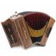 Castagnari 1914 accordion