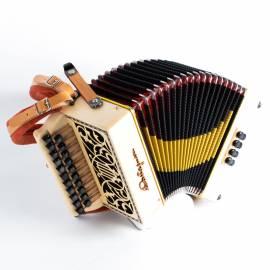 Castagnari Studio accordion